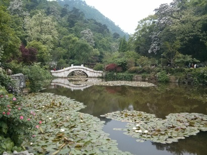 Chinese pond with stone bridge
