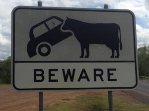Cows eat Cars